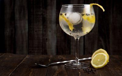 Degustazione distillati: l'esperienza sensoriale del gin puro